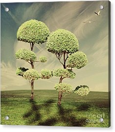 The Land Of The Lollipop Trees Acrylic Print by Linda Lees