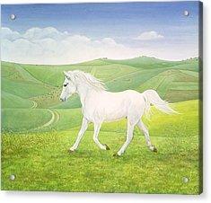 The Landscape Horse Acrylic Print