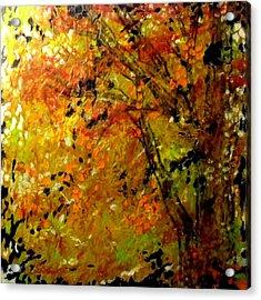The Last Days Of Autumn Acrylic Print by Cheryl Lynn Looker