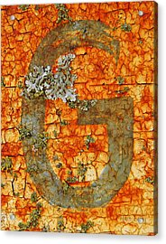 The Letter G With Lichens Acrylic Print by Chris Berry