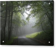 Acrylic Print featuring the photograph The Light Leading Home 2 by Diannah Lynch