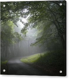Acrylic Print featuring the photograph The Light Leading Home 3 by Diannah Lynch