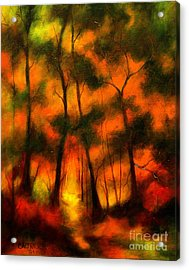 The Lighted Path Acrylic Print