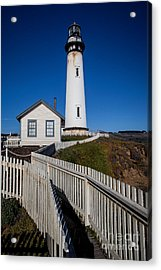 the Lighthouse Acrylic Print by Steven Reed