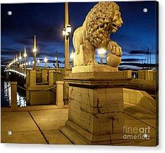 The Lion Acrylic Print by Richard Burr