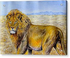 The Lion Rules Acrylic Print