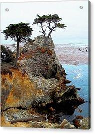 The Lone Cypress - Pebble Beach Acrylic Print by Glenn McCarthy Art and Photography