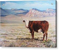The Lone Range Acrylic Print