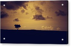 The Loneliness Of A Moorland Tree Acrylic Print by Chris Fletcher