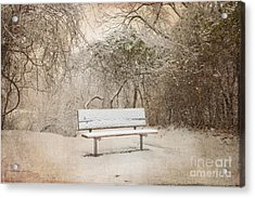 The Lonely Bench Acrylic Print by Betty LaRue