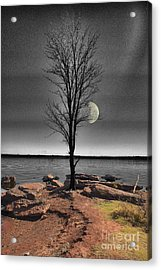 The Lonely Tree Acrylic Print by Betty LaRue