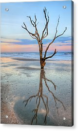 The Lonesome Tree Acrylic Print