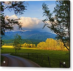 The Long And Winding Road Acrylic Print by Dave Bosse