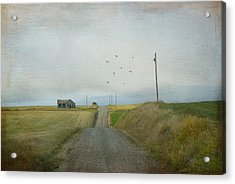The Long Road Home Acrylic Print by Juli Scalzi