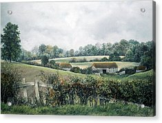 Acrylic Print featuring the painting The Lost Hedgerow by Rosemary Colyer