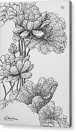 The Lotus Flower Acrylic Print