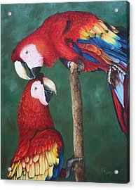 The Love Birds Acrylic Print by Pam Kaur