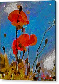 The Lovely Poppies Tnm Acrylic Print by Vincent DiNovici