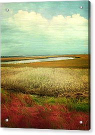 The Low Country Acrylic Print by Amy Tyler