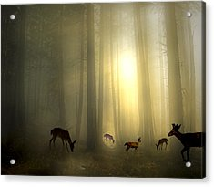 The Magic Of Sunrise Acrylic Print