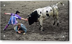 Rodeo The Magic Touch Acrylic Print