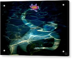The Magical Pond Acrylic Print by Gun Legler