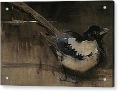The Magpie Acrylic Print by Joseph Crawhall