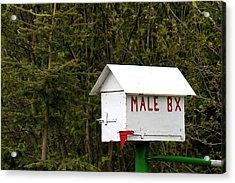 The Male Box Acrylic Print by Art Block Collections