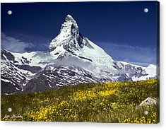 Acrylic Print featuring the photograph The Matterhorn With Alpine Meadow In Foreground by Jeff Goulden