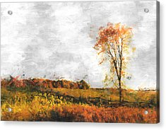 The Meadow Tree - Pt01 Acrylic Print by Variance Collections