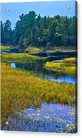The Meandering Moose River - Old Forge New York Acrylic Print by David Patterson