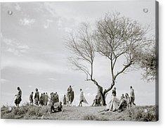 The Meeting Acrylic Print by Shaun Higson