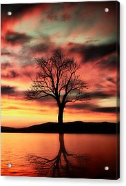 The Memory Tree Acrylic Print