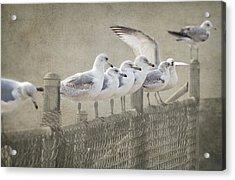 The Messenger Game Acrylic Print