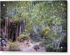The Mine Shaft Acrylic Print by Lana Trussell