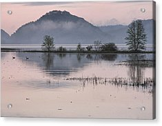 The Misty Mississippi Acrylic Print by Theo