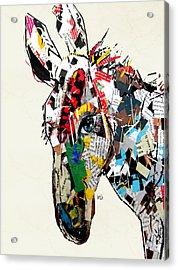 The Mod Donkey Acrylic Print