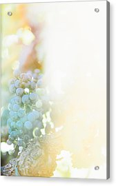 The Modern Grape 2 Acrylic Print by Clint Brewer