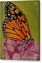 The Monarch Acrylic Print by Suzette Kallen