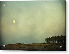 The Moon Above The Trees Acrylic Print