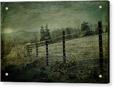 The Morning After Acrylic Print by Kathy Jennings