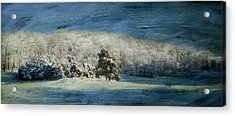 The Morning After Series II Acrylic Print