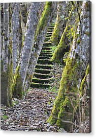 The Moss Stairs Acrylic Print by Kirt Tisdale