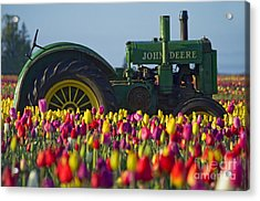 Acrylic Print featuring the photograph The Most Photographed Tractor In Oregon by Nick  Boren