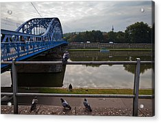 The Most Pilsudskiego Bridge Acrylic Print by Panoramic Images