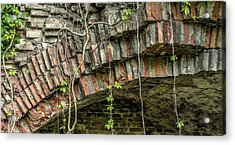 The Nature Of Time Equals Time For The Nature Acrylic Print