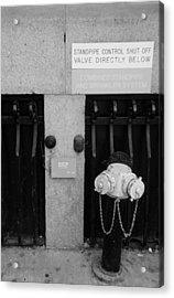 The New Normal In Black And White Acrylic Print by Rob Hans