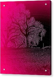 Acrylic Print featuring the digital art The Night by Visual Artist Frank Bonilla