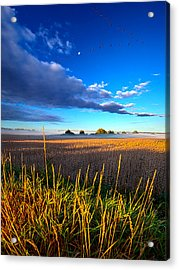 The Northern Winds Sing A Lullaby Acrylic Print by Phil Koch