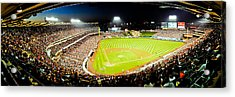 The Nose Bleeds  Acrylic Print by Andrew Raby